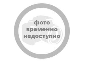 Эскиз нового герба Украины вызвал скандал - ангел в гольфах и лев с хозяйством